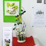 豊田信用金庫「名東支店」3月の展示品の紹介です。
