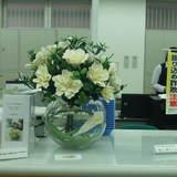 豊田信用金庫「名東支店」の展示品です。