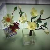 極楽・娯楽教室 Flower&Craftからのお知らせです。