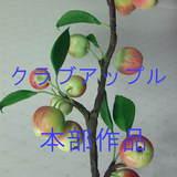 極楽・娯楽教室 Flower&Craftからのお知らせ。