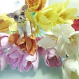日進・長久手教室 Flower&Craft
