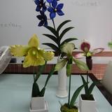 極楽・娯楽教室 Flower&Craft 生徒様の作品です。