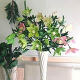極楽・娯楽教室 Flower&Craft ボタニカル2のお知らせです。